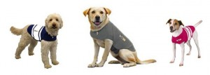 Examples of The Thundershirt in all three available styles - plain gray, blue rugby-striped or pink rugby-striped..