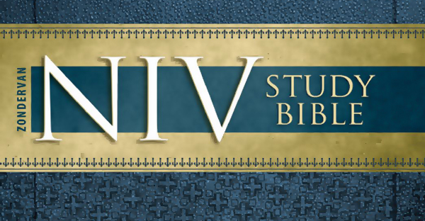 NIV Study Bible | Consuming and the American Dream?